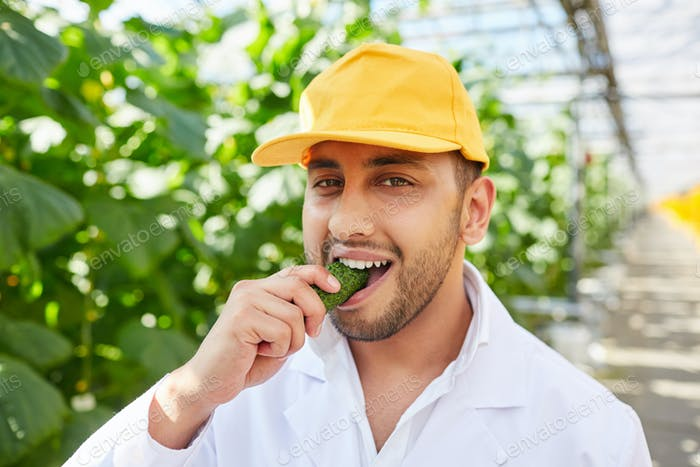 Agronomist eating cucumber