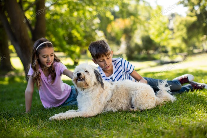 Boy and girl with dog in park