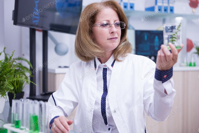 Middle age scientis woman holding a sample of green plant in a test tube