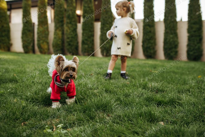 Kid with funny doggy walking in the garden