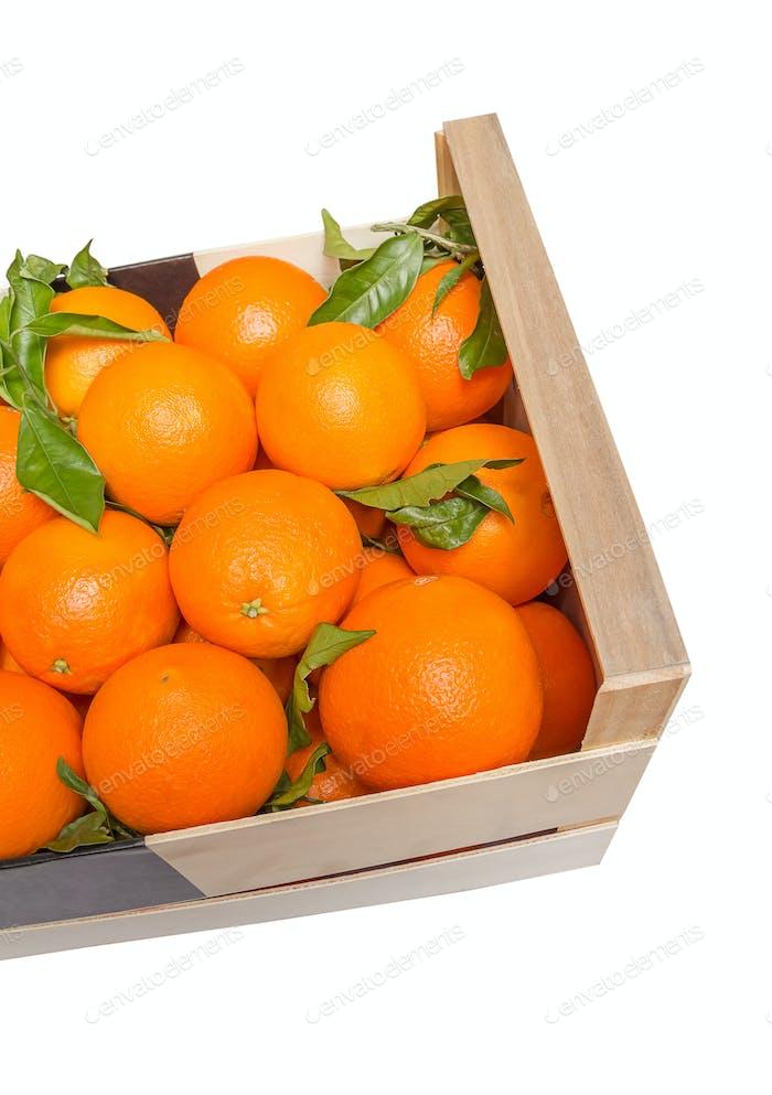 Holzkiste mit valencianischen Orangen auf weißem Hintergrund