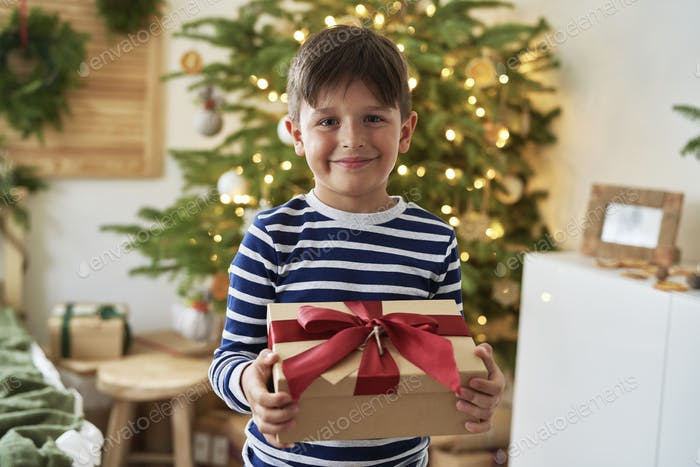Portrait of cute boy with Christmas present