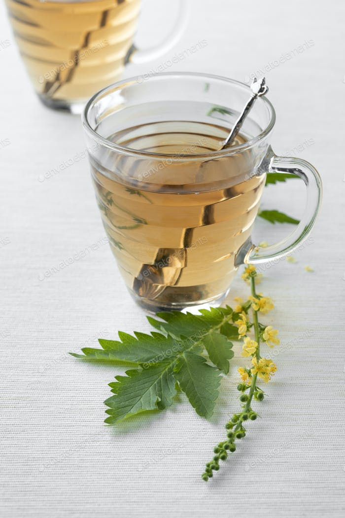 Glass cups with Agrimony tea
