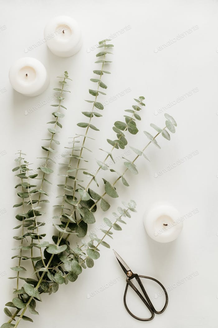 Creating of a bouquet with baby blue eucalyptus