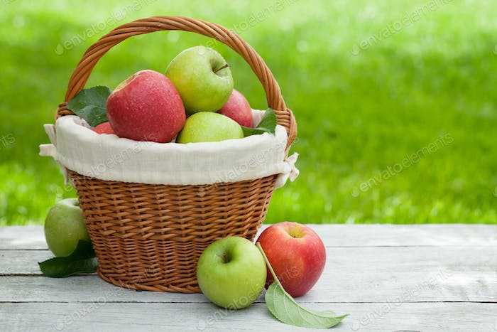 Fresh garden red and green apples in basket