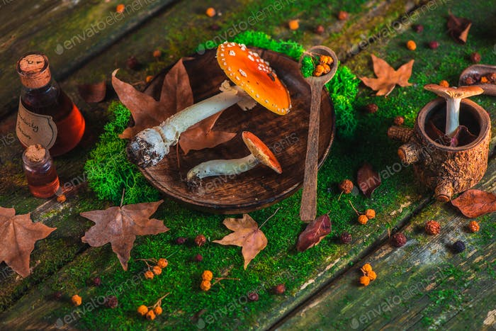 Red poisonous mushrooms on a wooden table with moss and leaves. Autumn flat lay with copy space