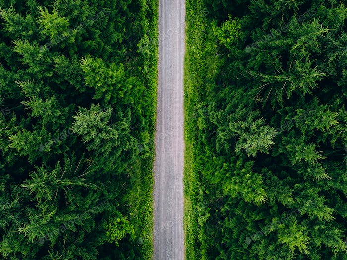 Aerial top view of road in green fir woods. Green forest with country road in Finland.