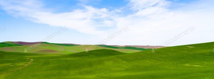 Rolling Green Hills Agricultural Land Parcialmente Nublado Cielo Azul