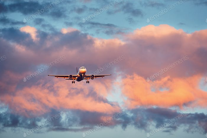 Airplane landing at the sunset