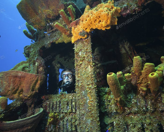 Scuba diver underwater on an artificial reef, a shipwrecked naval vessel.