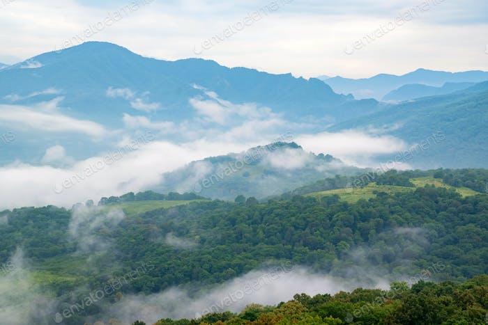 Malerische Aussicht auf neblige Berge. Wolken und Blick auf den grünen Bergwald