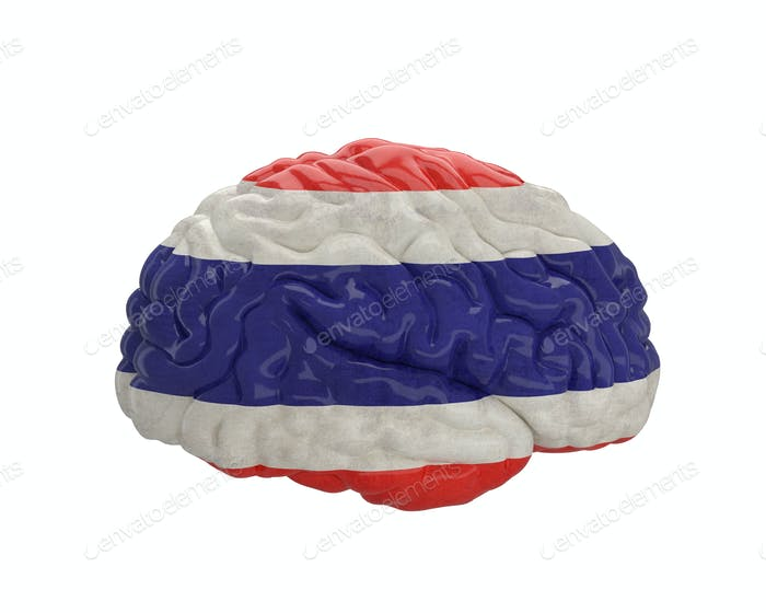 Thailand. Flag on Human brain. 3D illustration.