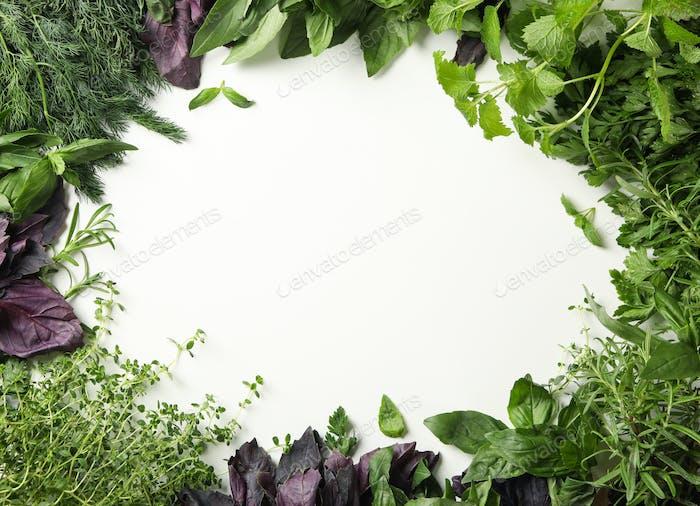 Verschiedene Kräuter auf weißem Hintergrund, Platz für Text