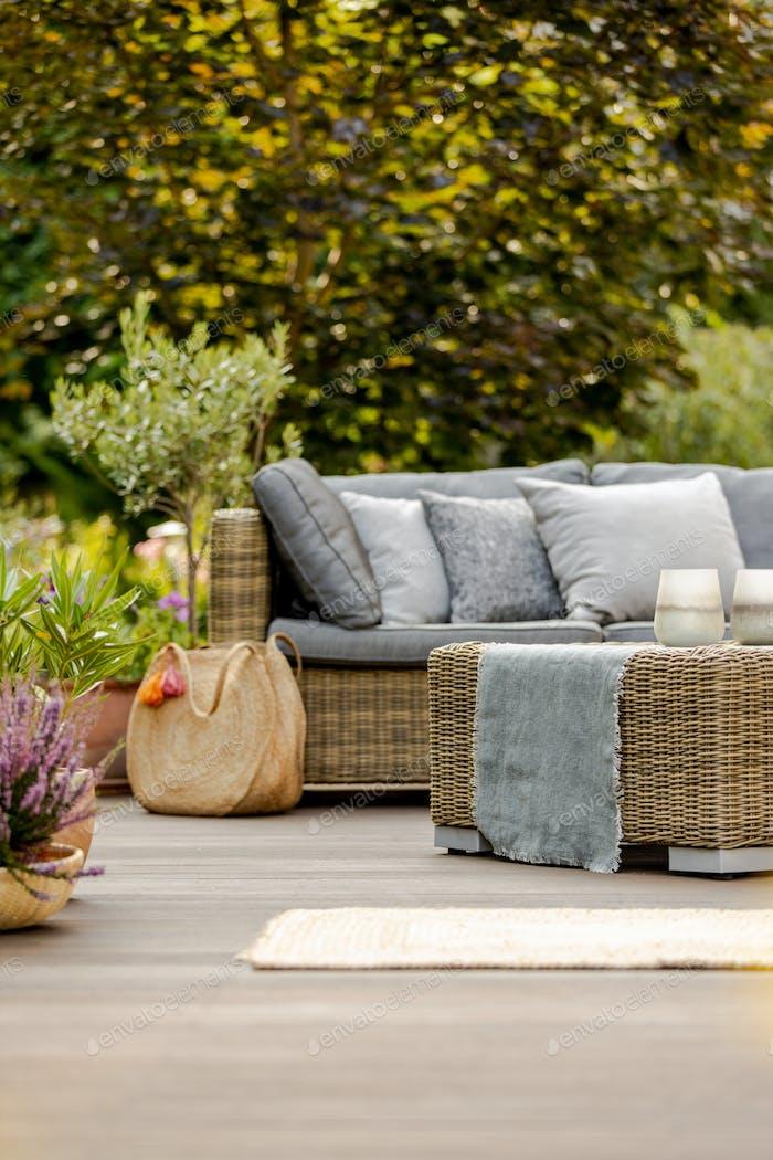 Bright summer day in green garden of elegant suburban home