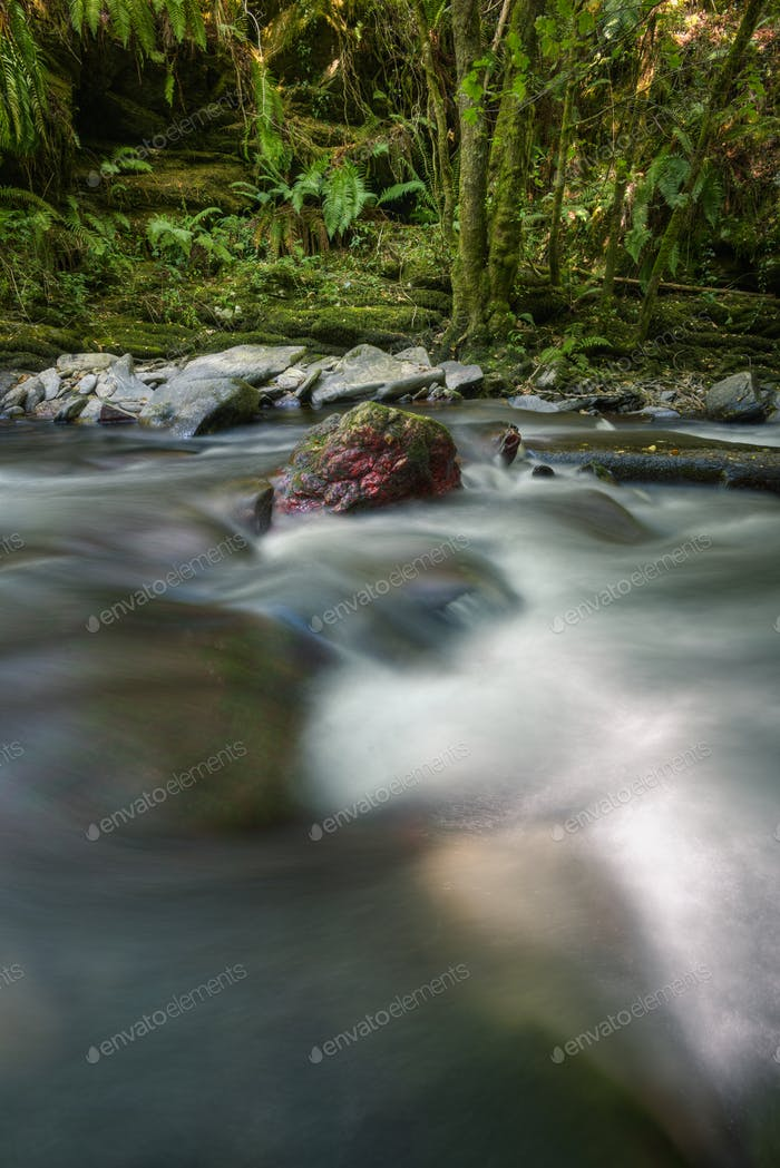 A reddish rock protrudes from the rushing current