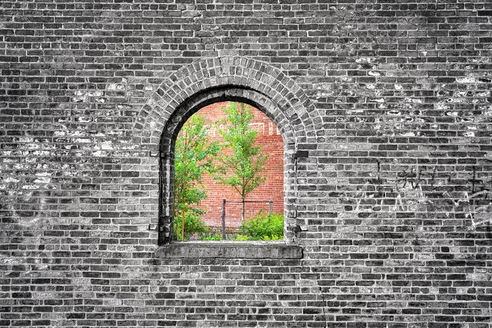 Window in black and white brick wall with green trees.
