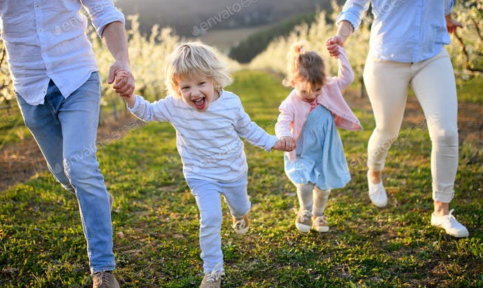 Family with two small children running outdoors in orchard in spring