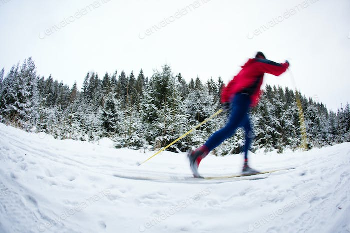 Thumbnail for young man cross-country skiing on a snowy forest trail (color to