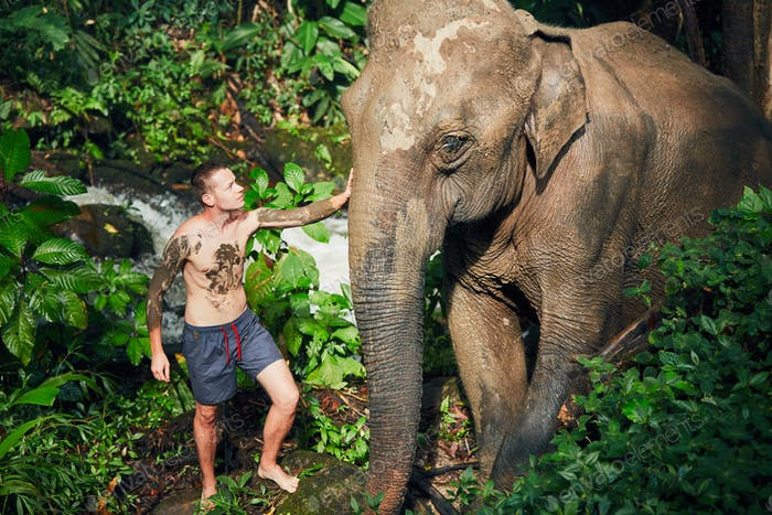 Traveler with elephant
