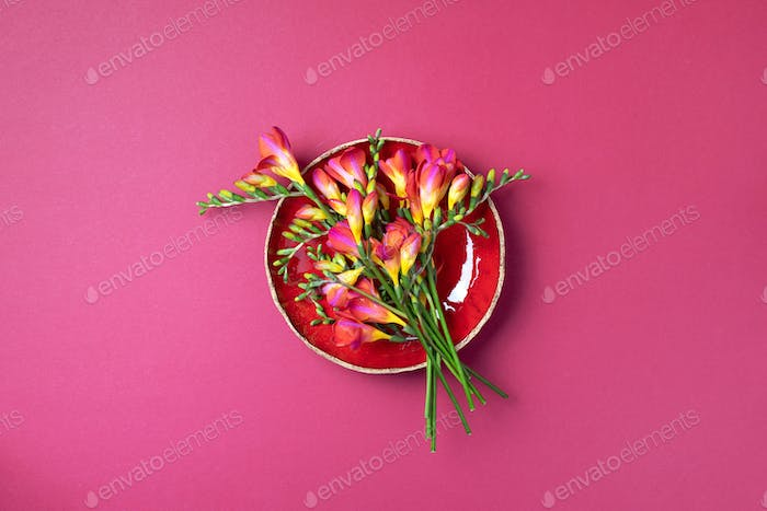 Spring freesia flowers on pink background. Top view. Flat lay. Copy space. Summer and spring concept