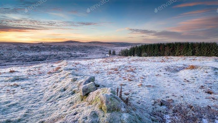 Wintery Moorland