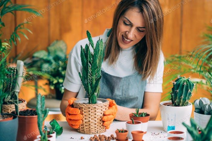Weibliche Gärtnerin hält ein Topfpflanze
