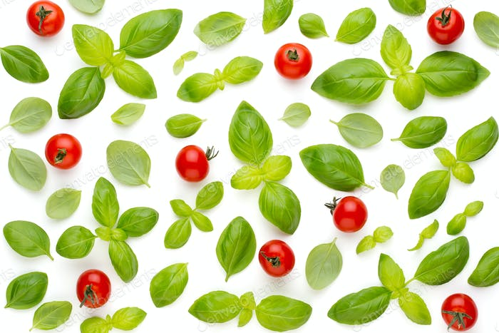 Basil and spices isolated on white background, top view. Flat lay.