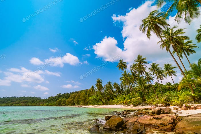 Beautiful paradise island with sea and beach landscape