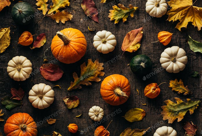 Colourful autumn leaves and pumpkin