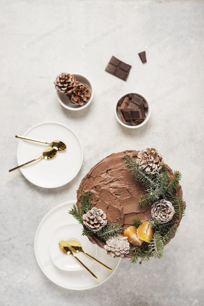 Christmas cake with pine cones