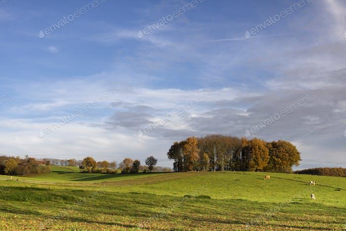 Landschaft in der Nähe von Groesbeek