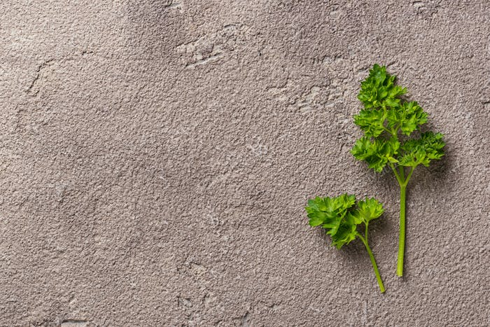Culinary background with branch a parsley