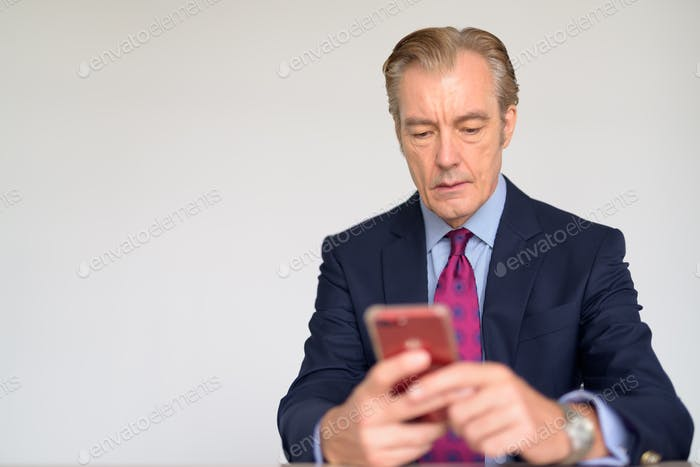 Mature handsome businessman using phone at work