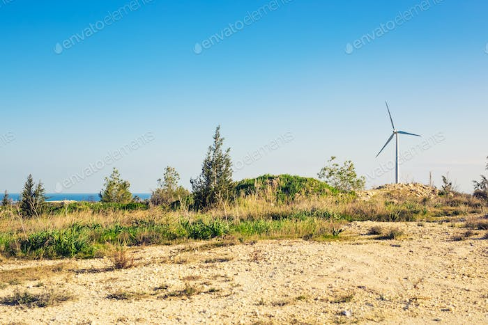 Wind mills during bright summer day