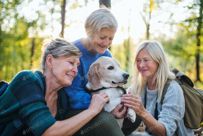 Senior women friends with dog on walk outdoors in forest.