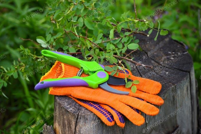 Gartenhandschuhe mit einer Gartenschere zum Arbeiten im Garten