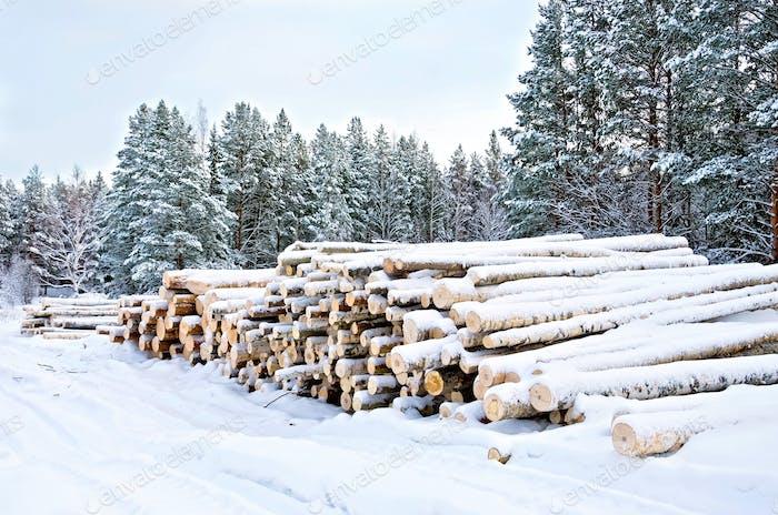 Holz auf dem Schnee im Winter