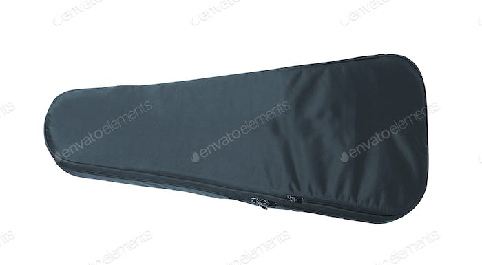 Violin Case isolated