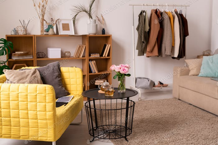 Domestic room interior with couches, shelves, small table and rack with clothes