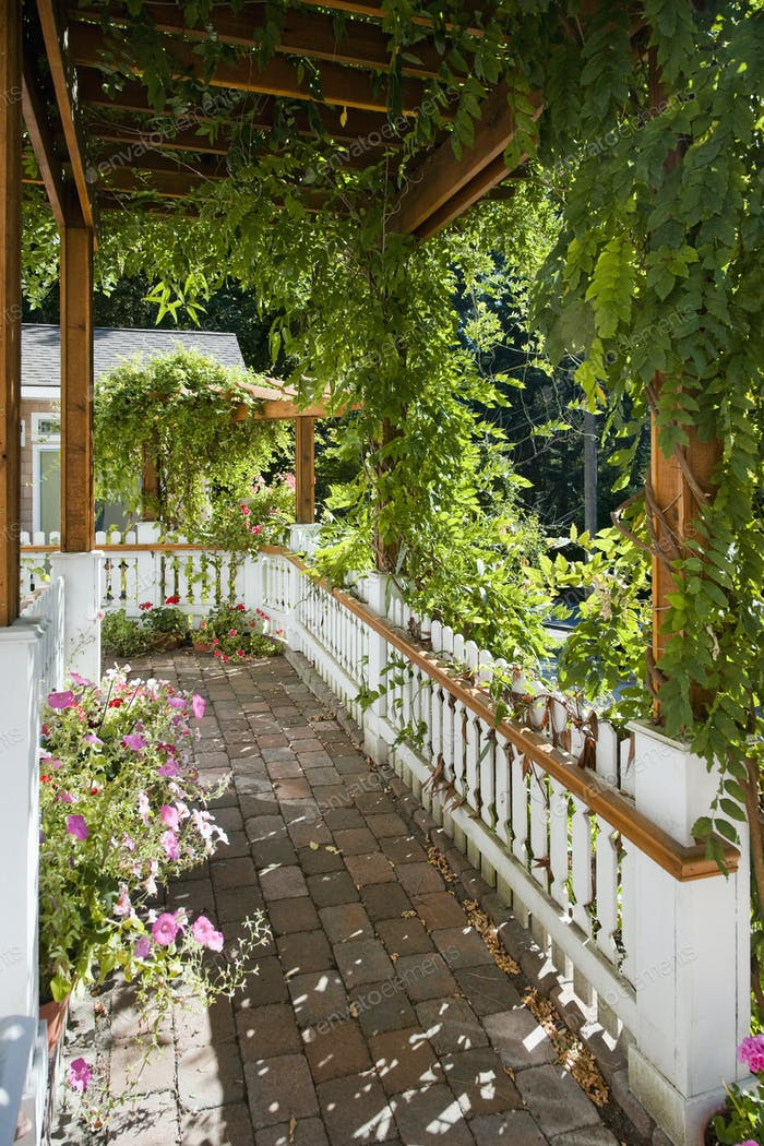 47702,Plant-Covered Walkway