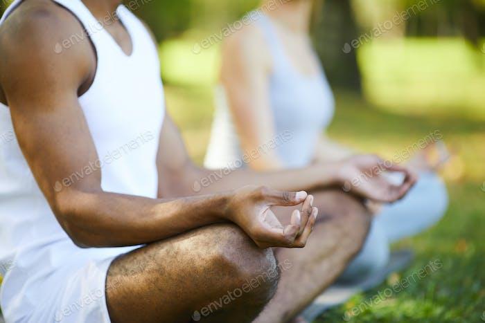 Yogis sitting in lotus position