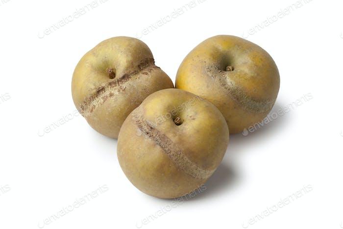 Patte de loupe apples