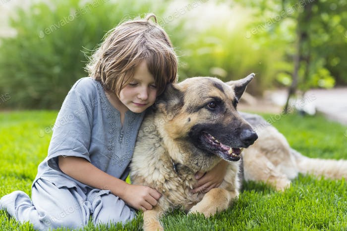 5 year old boy playing with his German Shepherd dog on green lawn