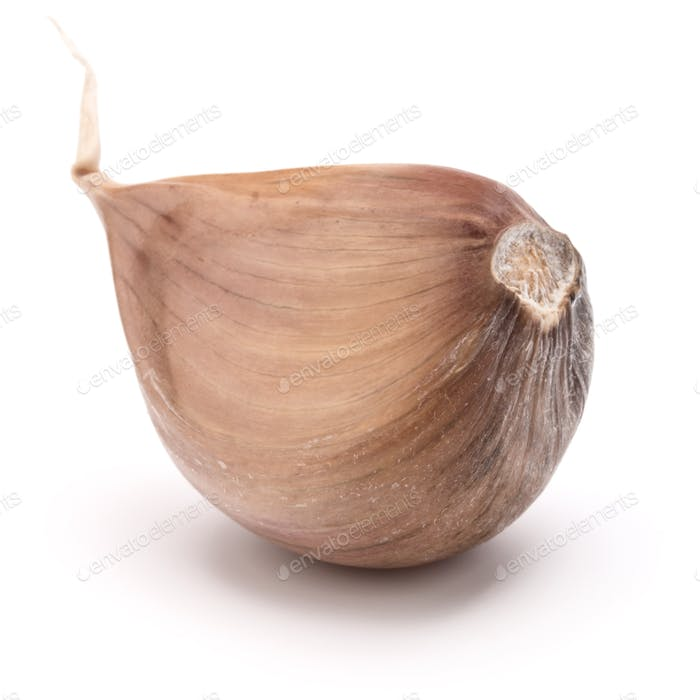 One garlic clove isolated on white background cutout