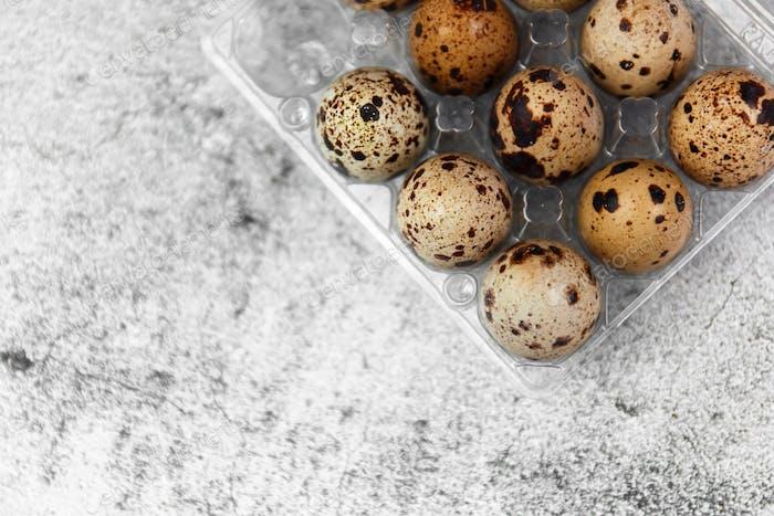 Quail eggs on concrete gray background.