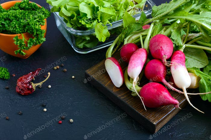 Fresh organic greens. Radishes, curly parsley, young lettuce on a black background.
