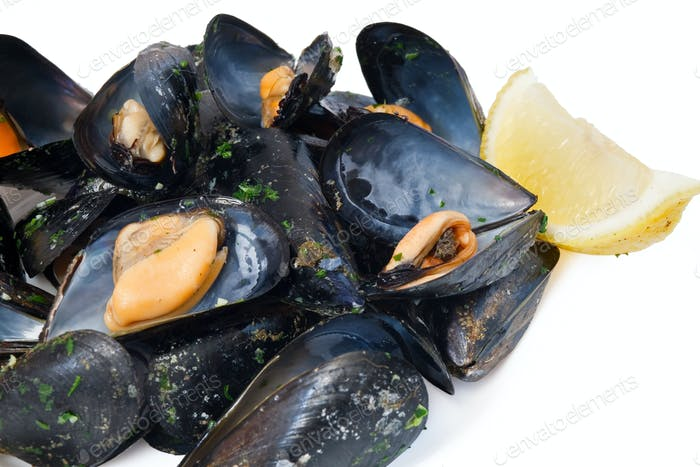 cooked mussels closeup