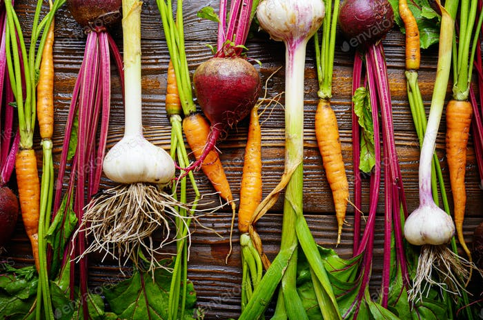 Vegetarian background of fresh organic beetroots green garlic an