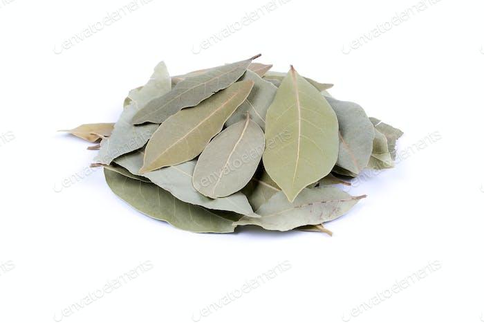 Bay leafs