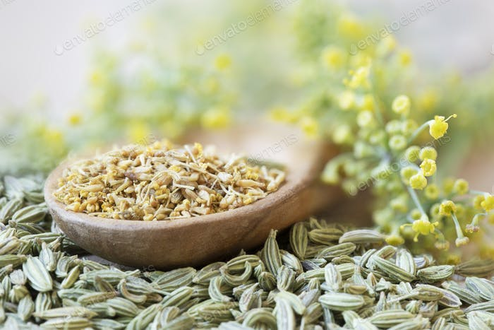 Fennel Pollen, Seeds and Flowers